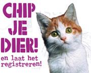 banner_chipjedier.jpg
